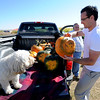 """Damian Story of Thornton, loads up a pumpkin with the approval of Jada the dog.<br /> For more photos of pumpkin patches, go to  <a href=""""http://www.dailycamera.com"""">http://www.dailycamera.com</a><br /> Cliff Grassmick / October 2, 2011"""
