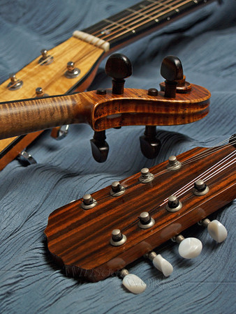Close-up of Mandolin and Guitar Head-stocks and Violin Scroll