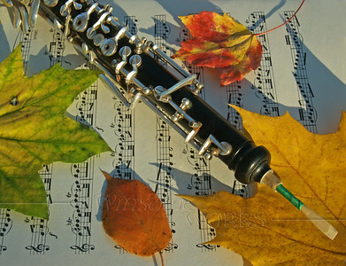 Oboe with Fall Maple and Birch Leaves