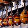 """""""There's nothin' so feminine as a mandolin."""" ... says Jimmy Buffett"""
