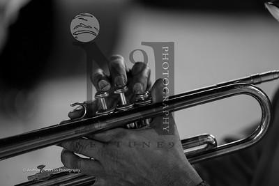 JazzInTheGardens-2531