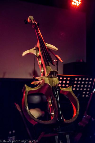 Starfish cello