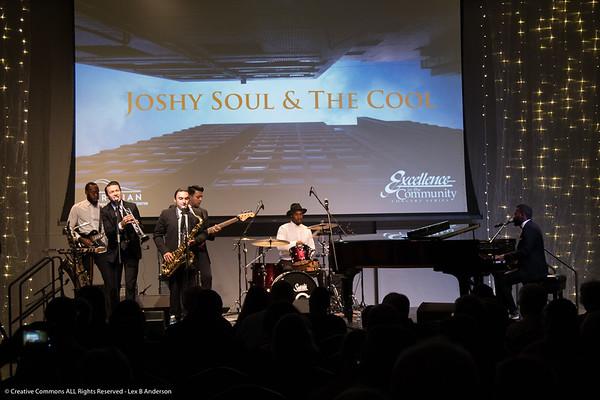 Joshy Soul Viridian 2016