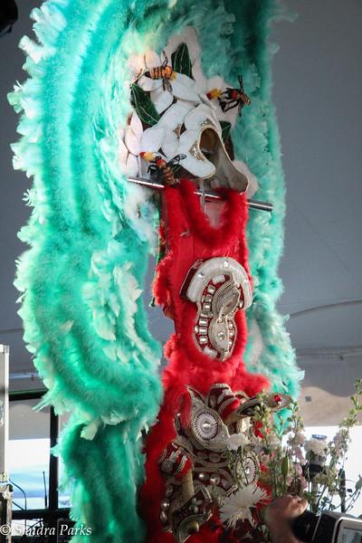chief Shaka Zulu's suit