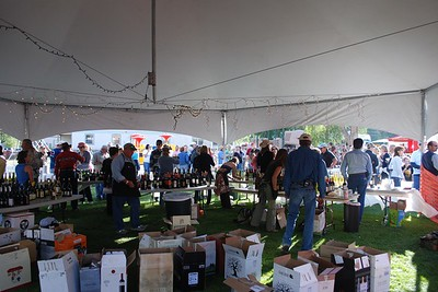 Lake City Wine and Music Festival