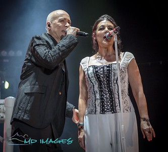 Lets Rock '19 - The Human League ©Mike Dean-23