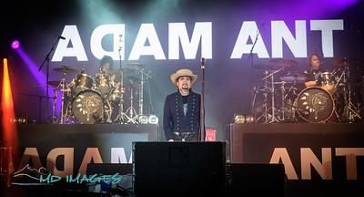 Adam Ant-15