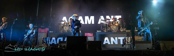 Adam Ant-1