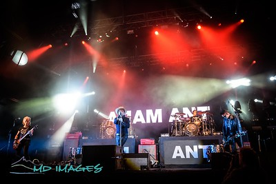 Adam Ant-3