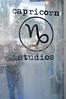 Capricorn Studios