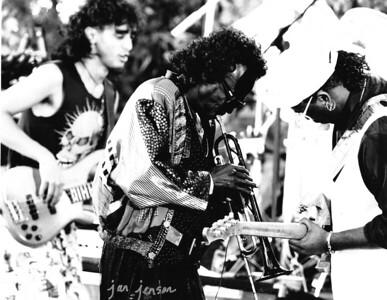 Miles Davis at Paul Masson Winery in San Jose, CA - 1989