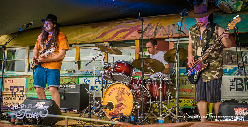 The Mad Tea Party Jam - June 19, 20, & 21, 2014 - Hedgesville, WV. ©Joshua Timmermans & Noble Visions