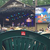 "The Kruger Brothers Perform ""Fields of Gold"" at Merlefest 2016 #KrugerBrothers #Merlefest"
