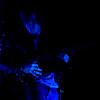 Music_MAC_KOL_9S7O5148