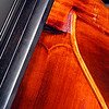 Double Bass showing detail of ebony finger-board, neck-block, along with the beautiful grain and the purfling and carving in the top table.