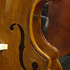 Busetto-cornered double bass, showing f-hole and beautiful grain on the table of the bass, and the ornate purfling.