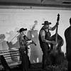 Bluegrass shadows