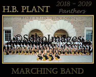 Plant Band Group 2018