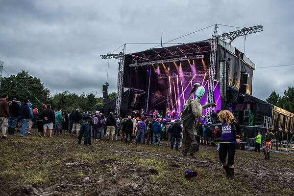Music Festival Portfolio