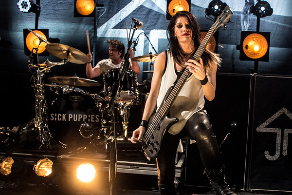 sick_puppies-1118