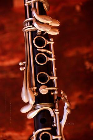 Black horn 0413 4574