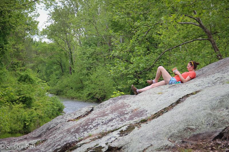 Reptilian meditation on the rock.