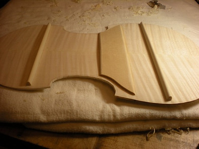 Struts have been shaped more once the glue is dry. and will be shaped a bit more once glued to the ribs.