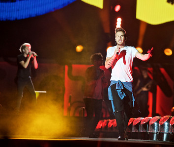 One Direction in Concert - East Rutherford, N.J.
