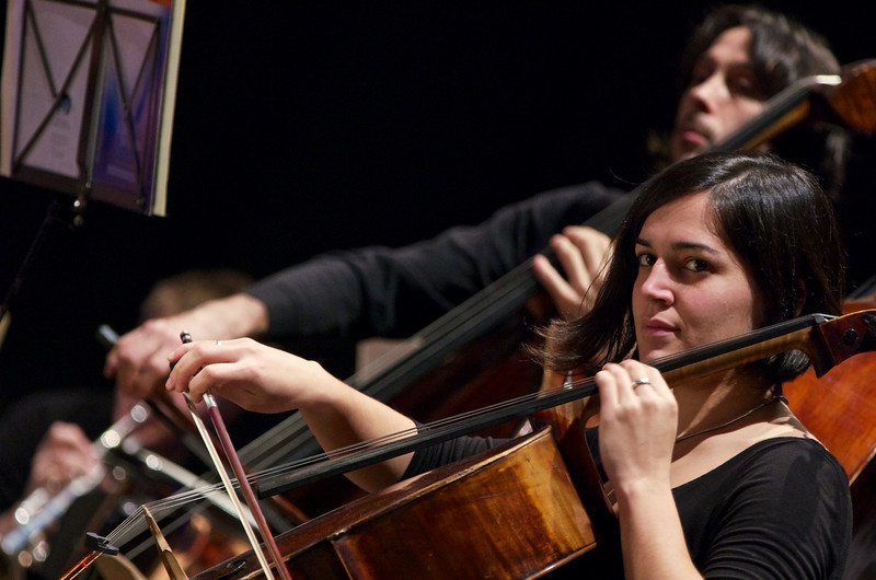 Orchestra Camerata Ducale