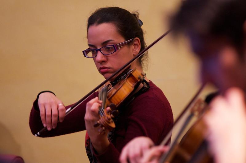 Helena Piccazio ( violin / violino )