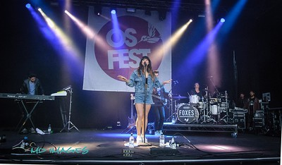 Foxes OsFest '14-1