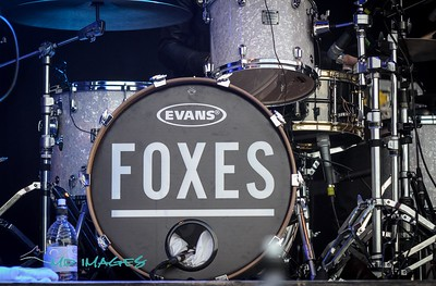 Foxes OsFest '14-12