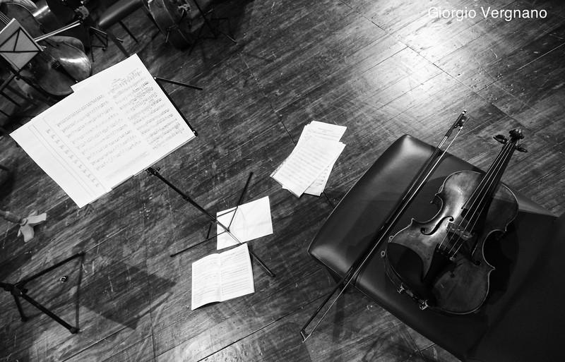 first violin - primo violino