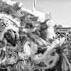Buffalo Hunters, Wild Squatoulas and Wild Tchoupitoulas Mardi Gras Indians parade (Sun 5 7 17)_May 07, 20170003-Edit