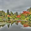 Japanese Garden 10/15