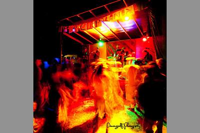 Porcupine2012-186dw