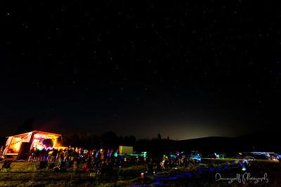 Porcupine2012-164dw