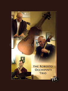 The Roberto Occhipinti Trio ... December 12, 2009