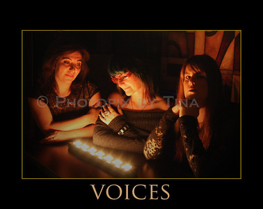 Voices ...  October 19, 2008