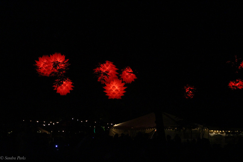 Redwing lights at night