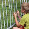 Festival child