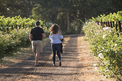 2019_07 19_LittleVineyards-030