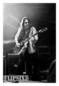 Chuck Duran (Guitar)