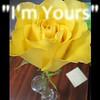 """I'm Yours"" (originally Jason Mraz) from Crazy lil' Sal<br /> <a href=""https://youtu.be/o4V_UMmm7G8"">https://youtu.be/o4V_UMmm7G8</a><br /> <br /> <a href=""https://creativemusicartsy.wordpress.com/2018/01/01/music-karaoke-im-yours-originally-jason-mraz-from-crazy-lil-sal/"">https://creativemusicartsy.wordpress.com/2018/01/01/music-karaoke-im-yours-originally-jason-mraz-from-crazy-lil-sal/</a><br /> <br /> <a href=""https://www.instagram.com/p/BePJMF3DEdU/?taken-by=creativemusicartsy"">https://www.instagram.com/p/BePJMF3DEdU/?taken-by=creativemusicartsy</a><br /> <br /> <br /> <a href=""https://salphotobiz.smugmug.com/Flowers/Various-Flowers/i-7xTqpm8"">https://salphotobiz.smugmug.com/Flowers/Various-Flowers/i-7xTqpm8</a>"