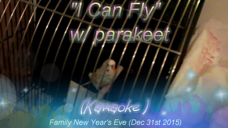 """I Believe I can Fly"" w/parakeet<br /> <a href=""https://youtu.be/XXk9Ay1lVtg"">https://youtu.be/XXk9Ay1lVtg</a><br /> <br /> <a href=""https://creativemusicartsy.wordpress.com/2016/05/20/music-karaoke-i-believe-i-can-fly-wparakeetarakeet/"">https://creativemusicartsy.wordpress.com/2016/05/20/music-karaoke-i-believe-i-can-fly-wparakeetarakeet/</a><br /> <br /> <br /> R Kelly I Believe I Can Fly Karaoke <br /> <a href=""https://youtu.be/BlQM4m8M4pg"">https://youtu.be/BlQM4m8M4pg</a><br /> <br /> <a href=""https://www.instagram.com/p/BRqYvpDDCEc/?taken-by=creativemusicartsy"">https://www.instagram.com/p/BRqYvpDDCEc/?taken-by=creativemusicartsy</a><br /> <br /> R Kelly - I Believe I Can Fly (Karaoke Version) <br /> <a href=""https://youtu.be/YtR37uCC0Os"">https://youtu.be/YtR37uCC0Os</a>"