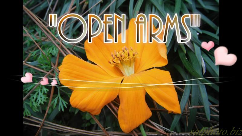 """Open Arms"" (Karaoke) by Crazy lil' Sal<br /> <a href=""https://youtu.be/U5Gm013F_zw"">https://youtu.be/U5Gm013F_zw</a><br /> <br /> <a href=""https://creativemusicartsy.wordpress.com/2016/07/09/music-karaoke-open-arms-originally-by-journey-by-crazy-lil-sal/"">https://creativemusicartsy.wordpress.com/2016/07/09/music-karaoke-open-arms-originally-by-journey-by-crazy-lil-sal/</a><br /> <br /> <br /> <a href=""https://www.instagram.com/p/BbGb9pHj_7d/?taken-by=creativemusicartsy"">https://www.instagram.com/p/BbGb9pHj_7d/?taken-by=creativemusicartsy</a><br /> <br /> <a href=""https://salphotobiz.smugmug.com/Travel/Baguio-Philippines/i-sjT8XMg"">https://salphotobiz.smugmug.com/Travel/Baguio-Philippines/i-sjT8XMg</a>"