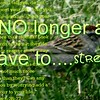 """NO longer a slave to...stress""<br /> <a href=""https://youtu.be/54Y1kvrolOg"">https://youtu.be/54Y1kvrolOg</a><br /> <br /> <a href=""https://creativemusicartsy.wordpress.com/2016/09/08/music-parody-no-longer-a-slave-to-stress/"">https://creativemusicartsy.wordpress.com/2016/09/08/music-parody-no-longer-a-slave-to-stress/</a><br /> <br /> <a href=""https://twitter.com/goodnewseverybo/status/773748931469512704"">https://twitter.com/goodnewseverybo/status/773748931469512704</a><br /> <br /> <a href=""http://salphotobiz.smugmug.com/Animals/Wildlife-around/20933493_P8fXK4#!i=2034021392&k=5mVP6Bm&lb=1&s=A"">http://salphotobiz.smugmug.com/Animals/Wildlife-around/20933493_P8fXK4#!i=2034021392&k=5mVP6Bm&lb=1&s=A</a>"