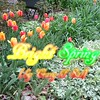 """Bright Spring"" (originally ""White Christmas"")<br /> <a href=""https://youtu.be/e2-IWp52N3M"">https://youtu.be/e2-IWp52N3M</a><br /> <br /> <a href=""https://creativemusicartsy.wordpress.com/2017/05/14/music-parody-bright-spring-originally-white-christmas-by-crazy-lil-sal/"">https://creativemusicartsy.wordpress.com/2017/05/14/music-parody-bright-spring-originally-white-christmas-by-crazy-lil-sal/</a><br /> <br /> <br /> <br /> <a href=""https://salphotobiz.smugmug.com/Weather/Spring-in-the-Air/i-qZqJrnQ"">https://salphotobiz.smugmug.com/Weather/Spring-in-the-Air/i-qZqJrnQ</a>"