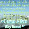 """Come Alive... Dry Bones"" ( originally by Lauren Daigle)  by Crazy Lil Sal<br /> <a href=""https://youtu.be/bcBbpLhyj1Q"">https://youtu.be/bcBbpLhyj1Q</a><br /> <br /> <a href=""https://creativemusicartsy.wordpress.com/2017/04/09/music-karaoke-come-alive-dry-bones-originally-by-lauren-daigle-by-crazy-lil-sal/"">https://creativemusicartsy.wordpress.com/2017/04/09/music-karaoke-come-alive-dry-bones-originally-by-lauren-daigle-by-crazy-lil-sal/</a><br /> <br /> <a href=""https://goodnewseverybodycom.wordpress.com/2017/04/09/reflection-church-service-glory-of-god-in-and-out-of-the-church-walls/"">https://goodnewseverybodycom.wordpress.com/2017/04/09/reflection-church-service-glory-of-god-in-and-out-of-the-church-walls/</a><br /> <br /> Lauren Daigle ""Come Alive (Dry Bones)"" Karaoke Version<br /> <a href=""https://youtu.be/AsLz6lOV8_U"">https://youtu.be/AsLz6lOV8_U</a><br /> <br /> dc Talk ""What if I Stumble?"" on Jesus Freak Cruise<br /> <a href=""https://youtu.be/NP7yr7Y5HFU"">https://youtu.be/NP7yr7Y5HFU</a><br /> <br /> <br /> <a href=""https://salphotobiz.smugmug.com/Weather/Winter/Winter-Wonderland/i-2K7fdCX"">https://salphotobiz.smugmug.com/Weather/Winter/Winter-Wonderland/i-2K7fdCX</a>"