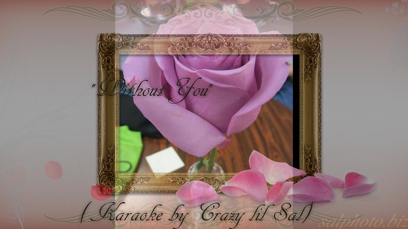 """Without You"" by Crazy lil' Sal<br /> <a href=""https://youtu.be/5DWw1bPfALo"">https://youtu.be/5DWw1bPfALo</a><br /> <br /> <a href=""https://creativemusicartsy.wordpress.com/2016/06/28/music-karaoke-without-you-originally-by-motley-crue-by-crazy-lil-sal/"">https://creativemusicartsy.wordpress.com/2016/06/28/music-karaoke-without-you-originally-by-motley-crue-by-crazy-lil-sal/</a><br /> <br /> #creativemusicartsy<br /> <a href=""https://www.instagram.com/p/BYfFnUGjDx8/?taken-by=creativemusicartsy"">https://www.instagram.com/p/BYfFnUGjDx8/?taken-by=creativemusicartsy</a><br /> <br /> <br /> <a href=""https://salphotobiz.smugmug.com/Flowers/Various-Flowers/i-C423tBL"">https://salphotobiz.smugmug.com/Flowers/Various-Flowers/i-C423tBL</a>"